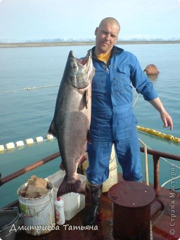 бриз рыболовное предприятие ооо